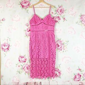 NEW Bardot Roxy Pink Pop Lace Midi Dress XL